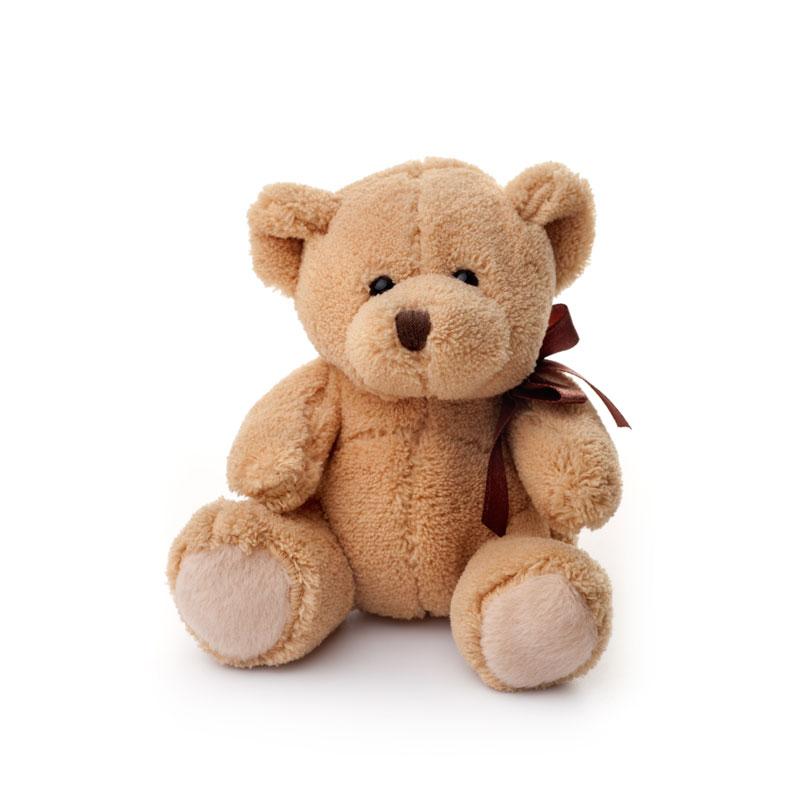 Plush teddybear toy